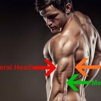 low reps or high reps for tricep growth